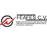 Logo FEAFES CV150