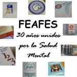 FEAFES 30 años 3