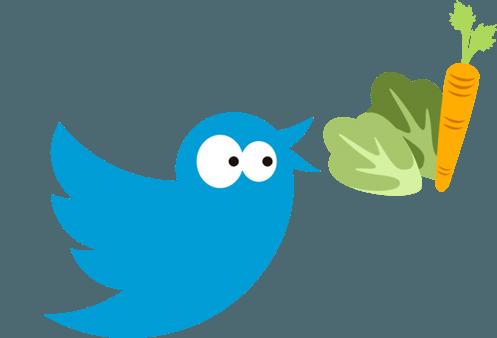 social co twitter
