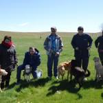 Terapia con animales: 'Un paseo que deja huella'