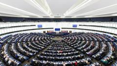 mental health europe en el parlamento europeo