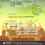 Festival solidario ANASAPS
