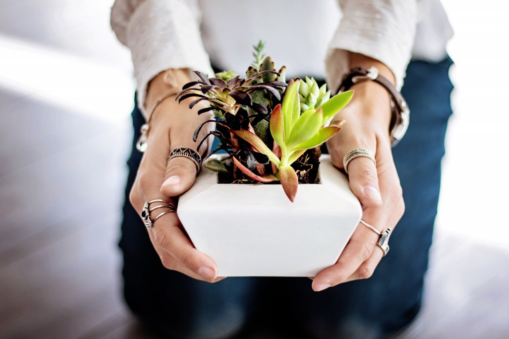Mujer con una planta en las manos