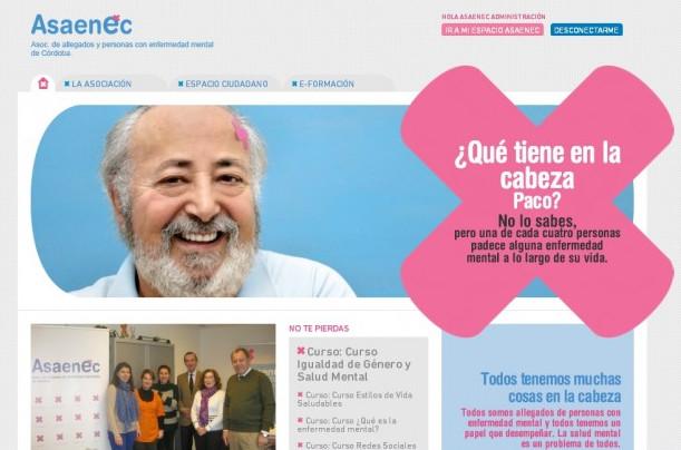 Nueva imagen de la web de la asociación de salud mental Asaenec