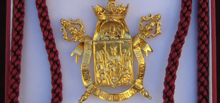 Medalla de la Ciudad Sevilla ASAENES