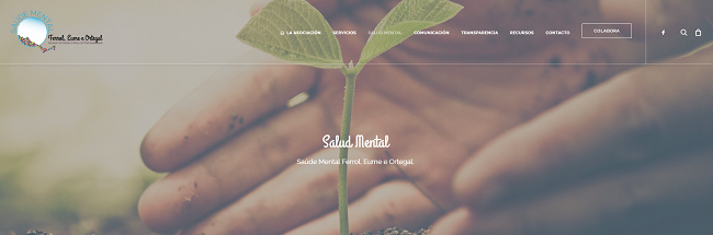 Imagen del apartado de salud mental en la nueva web.