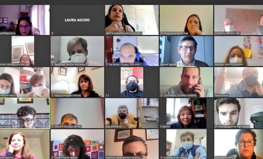 FEAFES Andalucía Salud Mental planificación